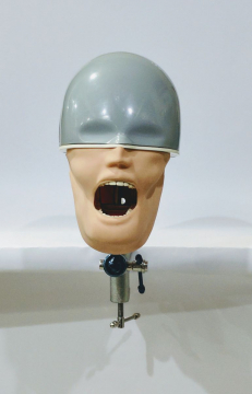 OSCE / ADC Manikin | Dental Phantom Head - Navadha